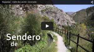 Vídeo sobre Nigüelas – 2015