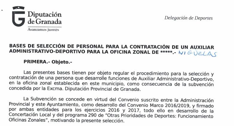 Selección Auxiliar Administrativo-Deportivo