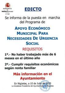 Programa de Apoyo Económico Municipal para Necesidades de Urgencia Social