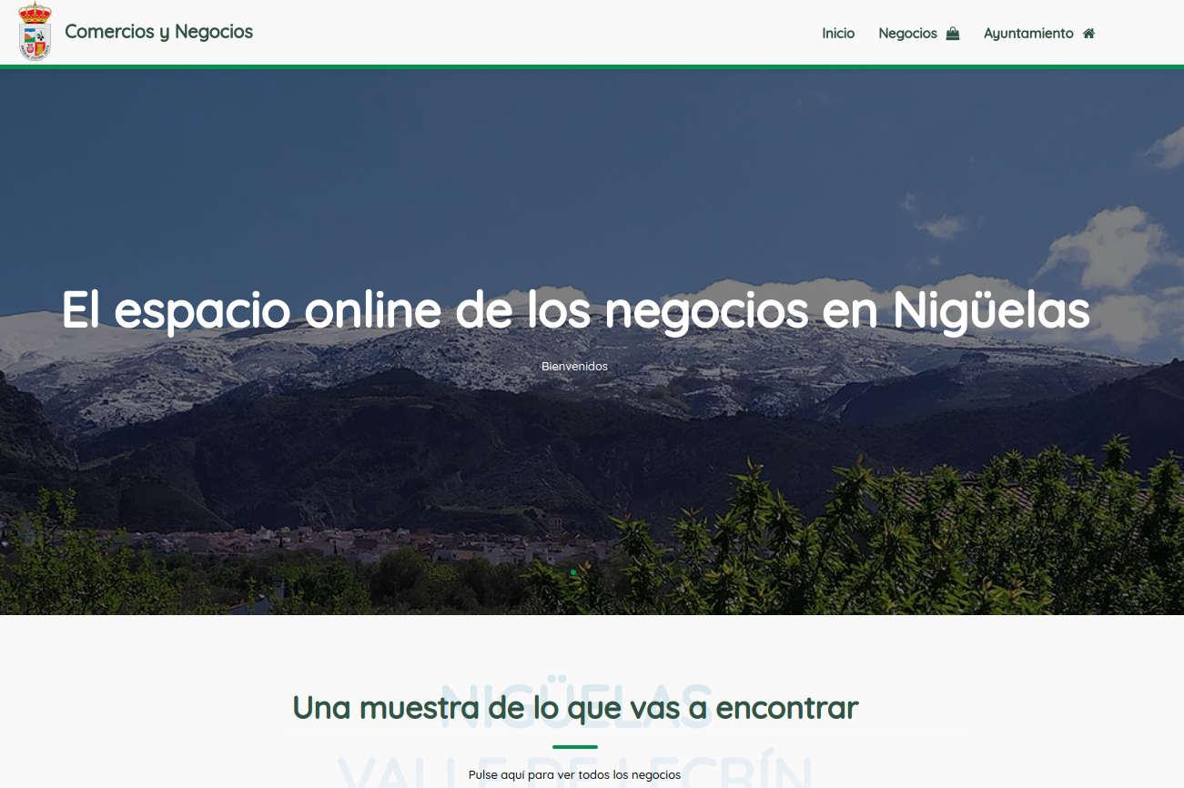 Lee más sobre el artículo Web Comercios Nigüelas