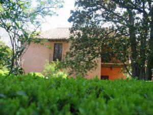 casa-zayas-niguelas00006