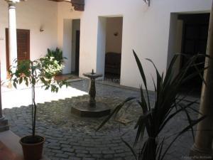 casa-zayas-niguelas00011