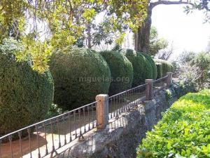 jardin-romantico-niguelas00005