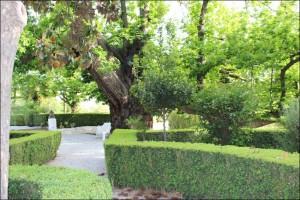 jardines-muller-niguelas002