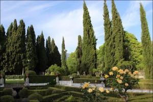 jardines-muller-niguelas005
