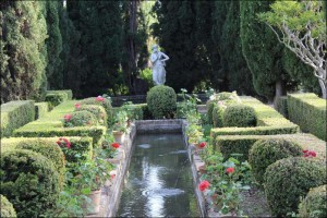 jardines-muller-niguelas009