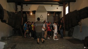 visitas-guidas-niguelas006
